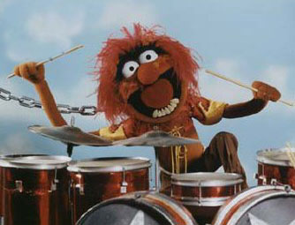 Animal Drummer Wanted!